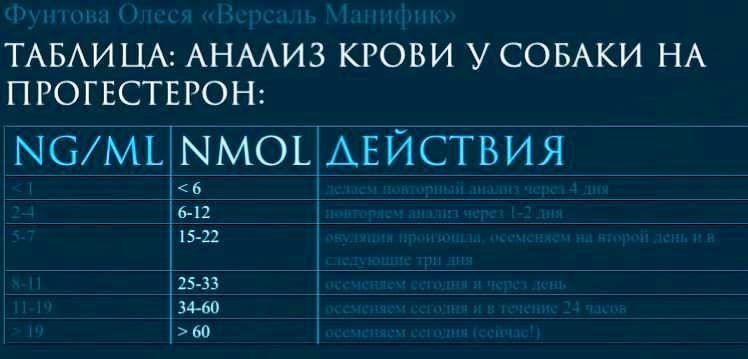 84386555_2708878882535524_8529087764547764224_n.jpg