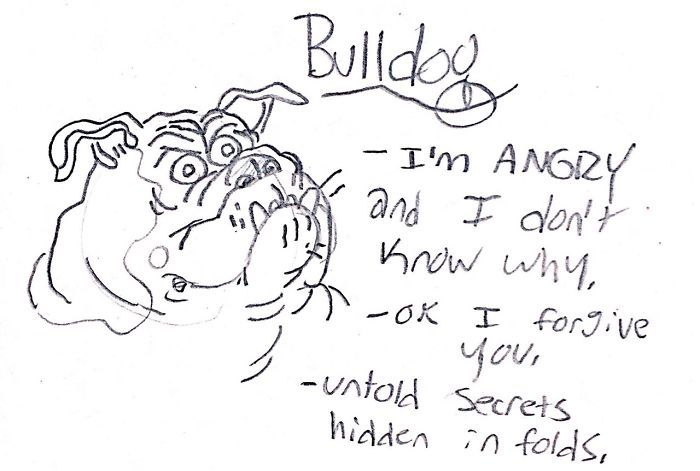 dog-breeds-traits-guide-cartoons-grace-gogarty-5-5a8a7c76152b6__700.jpg