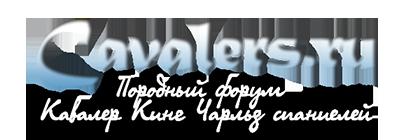 Cavalers.ru - Породный форум Кавалер Кинг Чарльз спаниелей