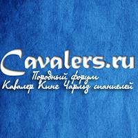 cavalers.ru